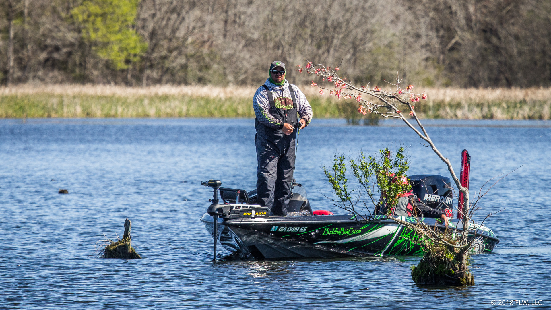 Image for Top 10 Patterns from Lake Seminole