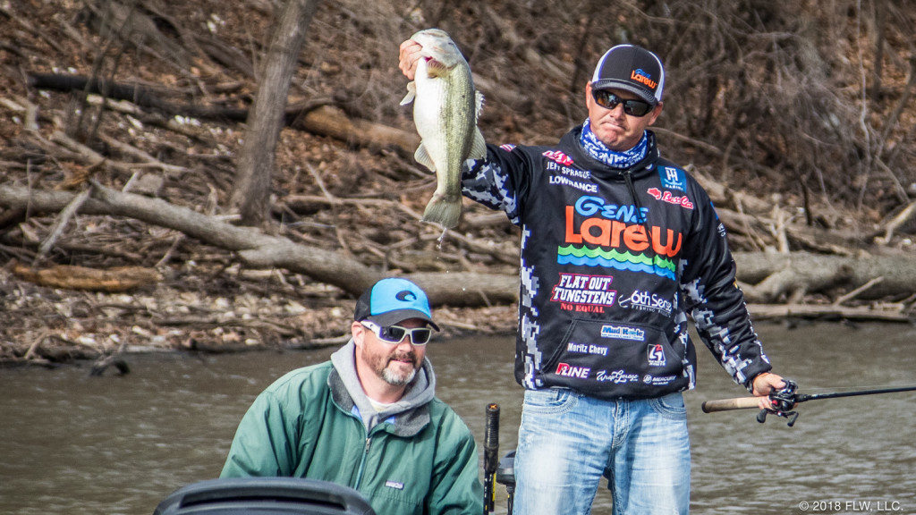 Image for Top 10 Patterns from Grand Lake