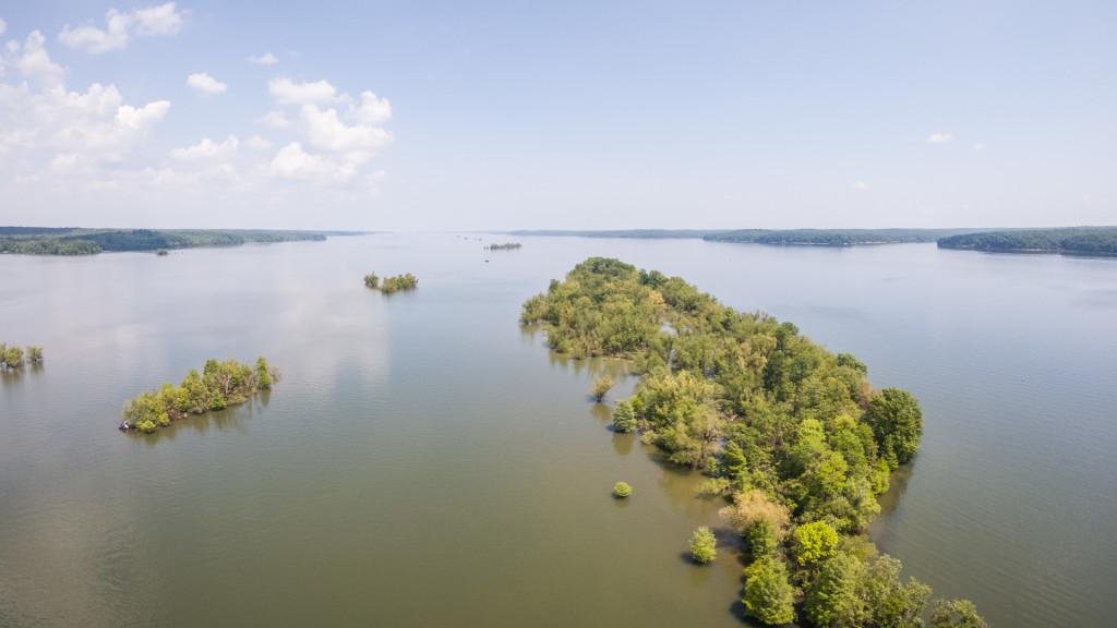 Image for Options on Kentucky Lake