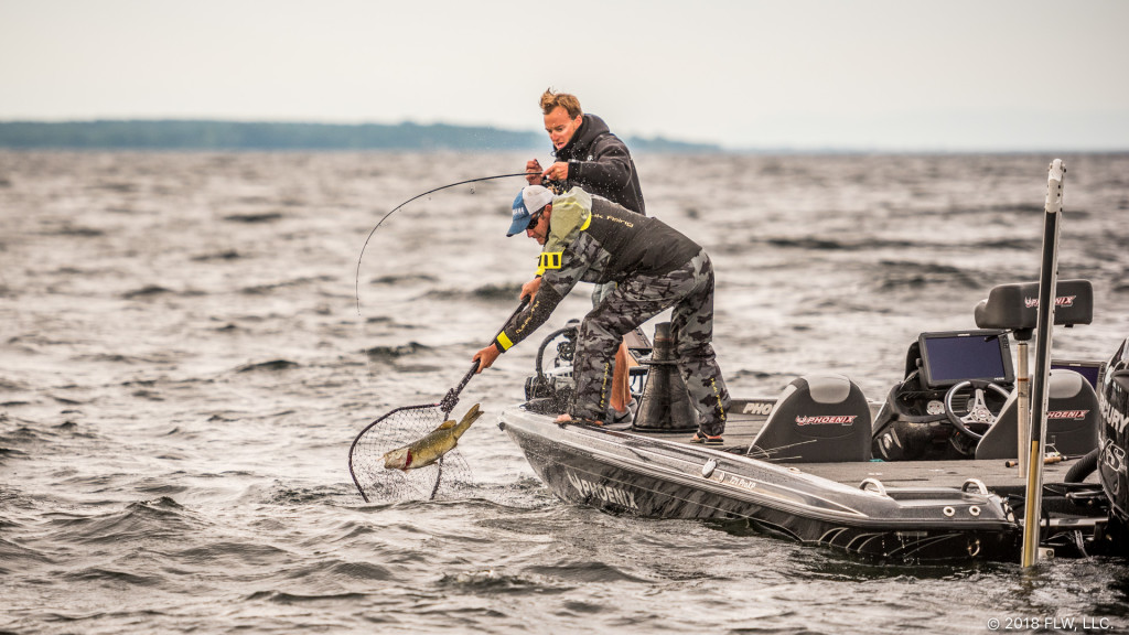 Image for Top 10 Patterns from Lake Champlain
