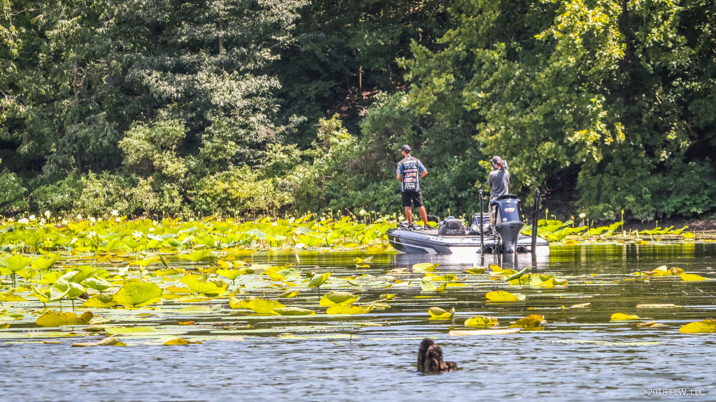 Image for Top 5 Patterns from Lake Ouachita – Day 2