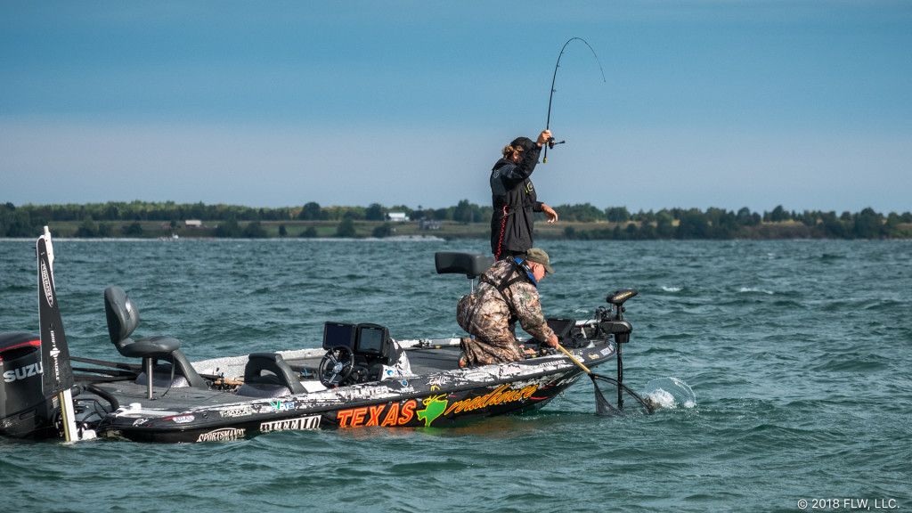 Image for Top 5 Patterns from the 1000 Islands – Day 1