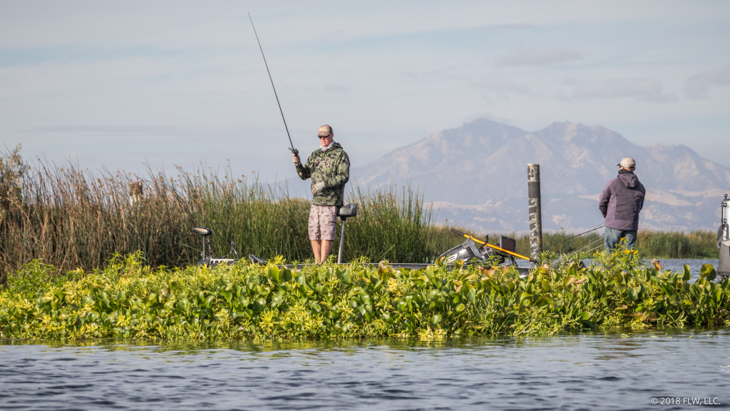 Image for Top 10 Patterns from the Cal Delta