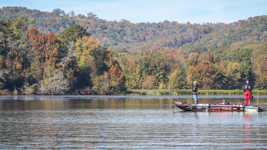 Image for Top 10 Patterns from Lake Guntersville