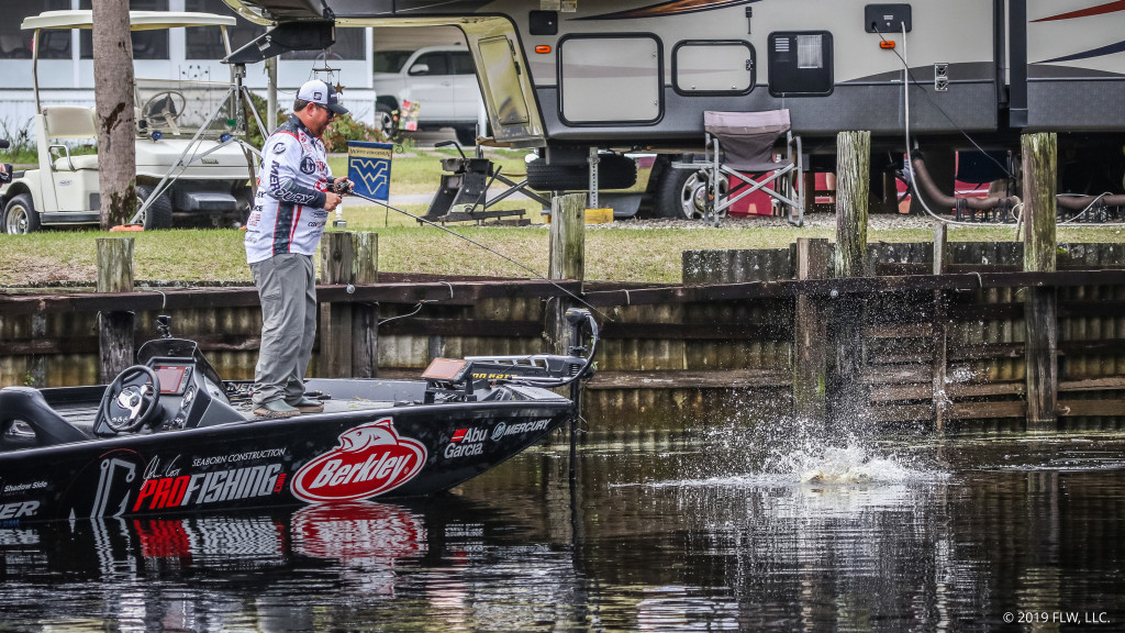 Image for Top 10 Patterns from Lake Toho