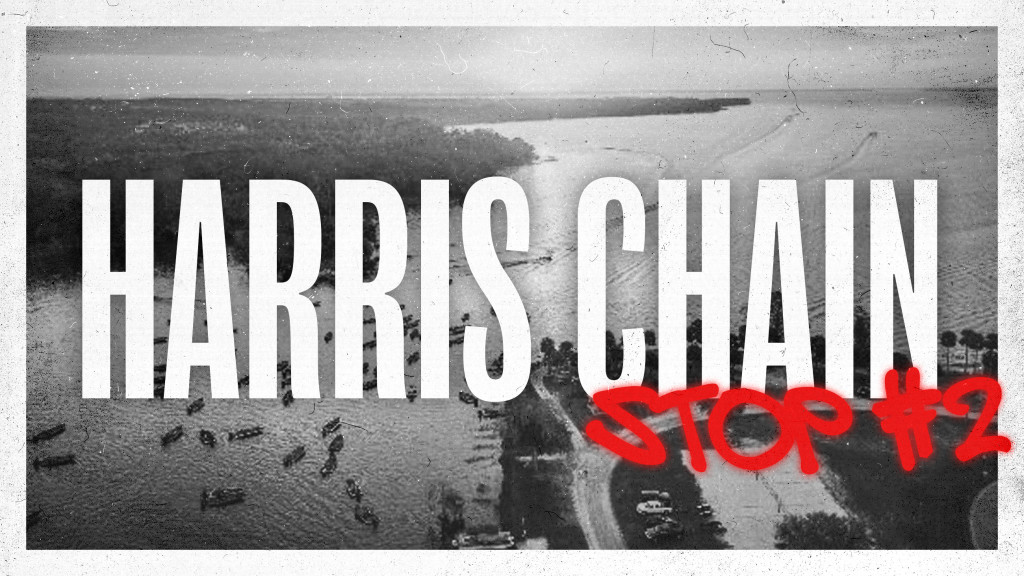 Image for 2020 Harris Chain Preview