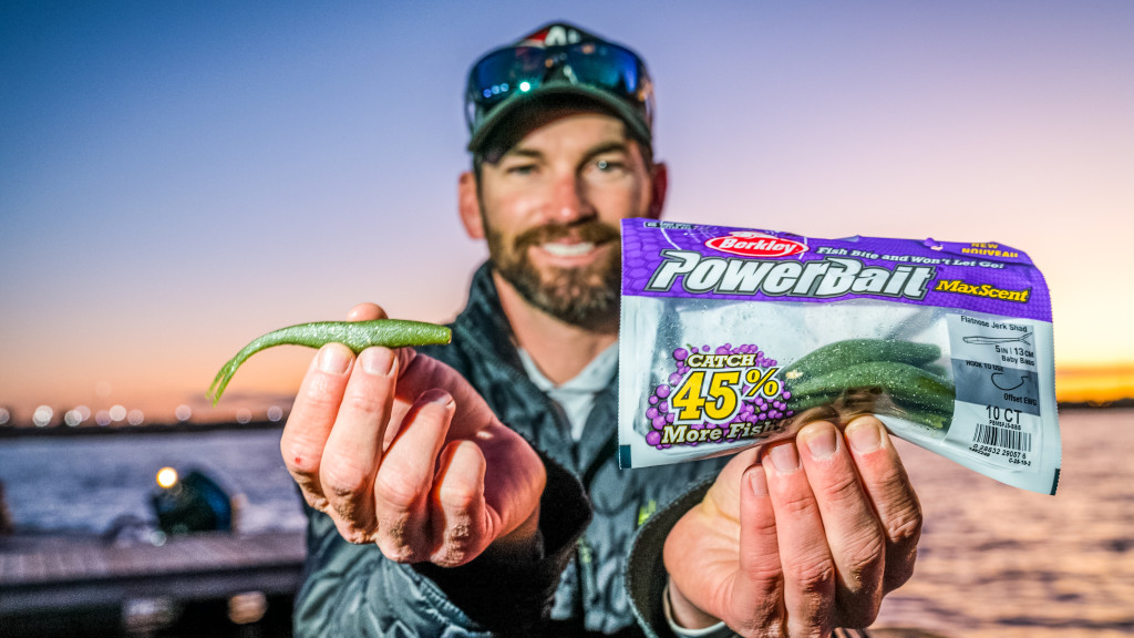 Image for Top 10 Baits from the St. Johns