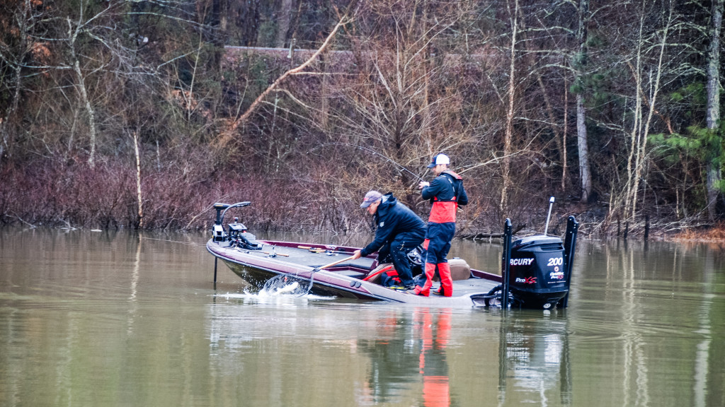 Image for Hartwell Top 5 Patterns – Day 1