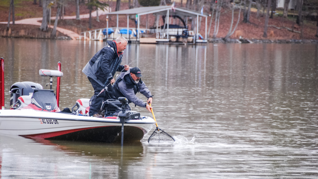 Image for Hartwell Top 5 Patterns – Day 2
