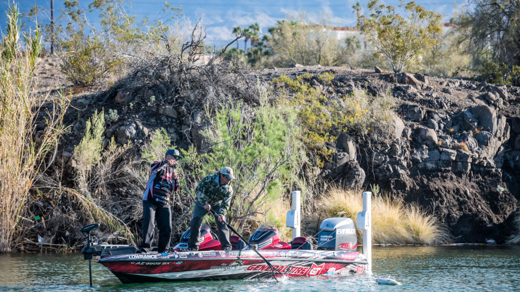 Image for Top 10 Baits and Patterns from Havasu