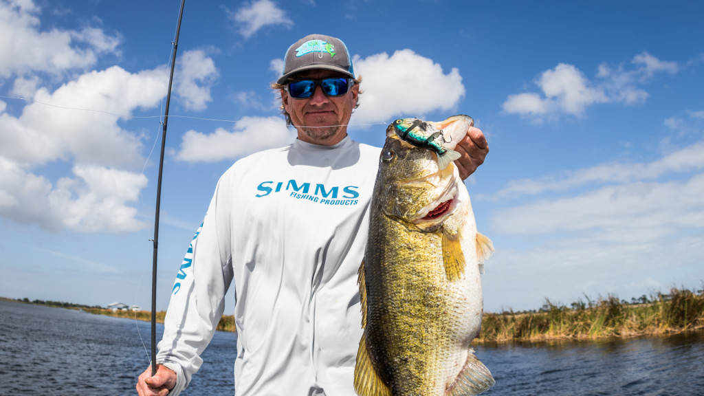 Image for Swimbait Experiments in Florida