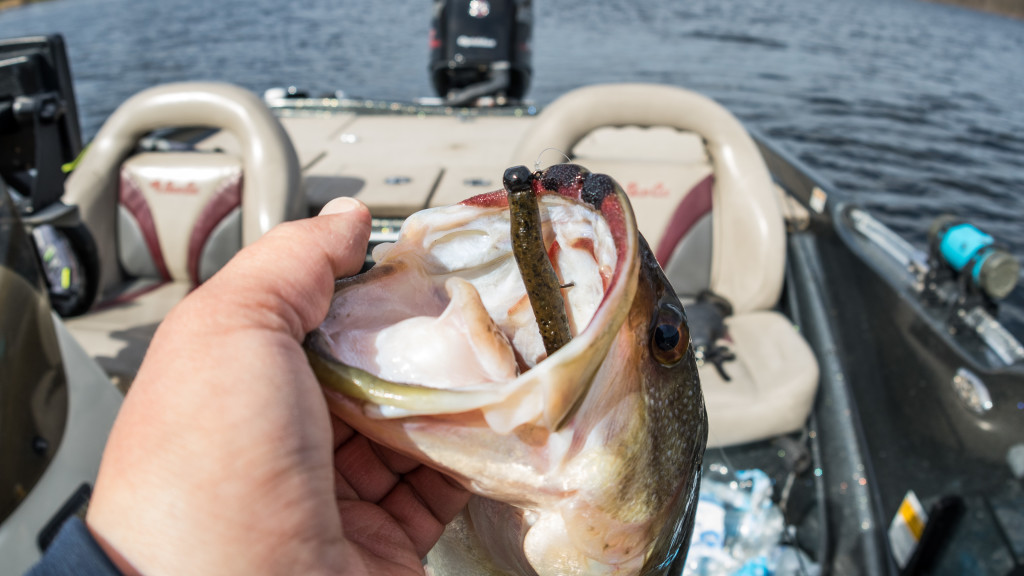 Image for Review: Outkast Tackle Perfect Ned Head