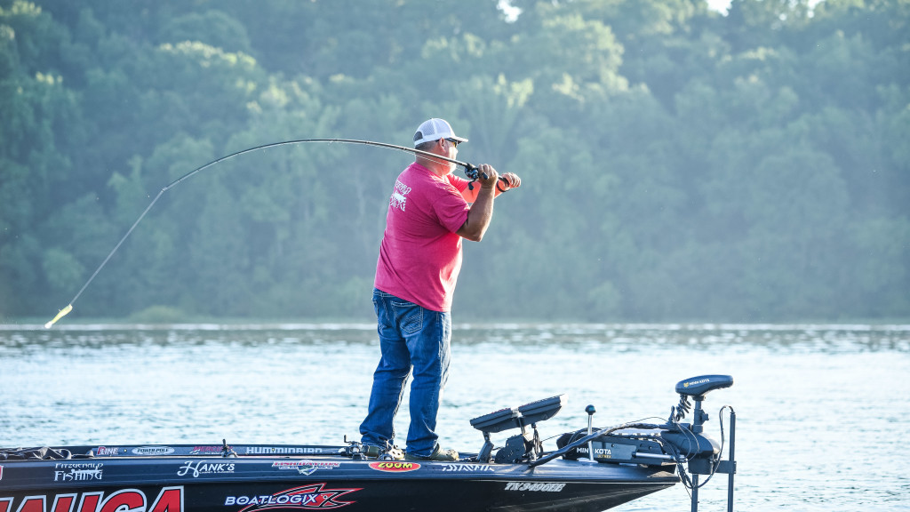 Image for Top 10 Patterns from Pickwick