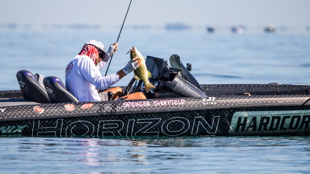 Image for Top 10 Patterns from Lake Erie