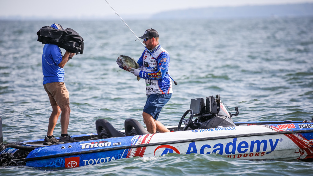 Image for Lake Erie Day 4 Coverage