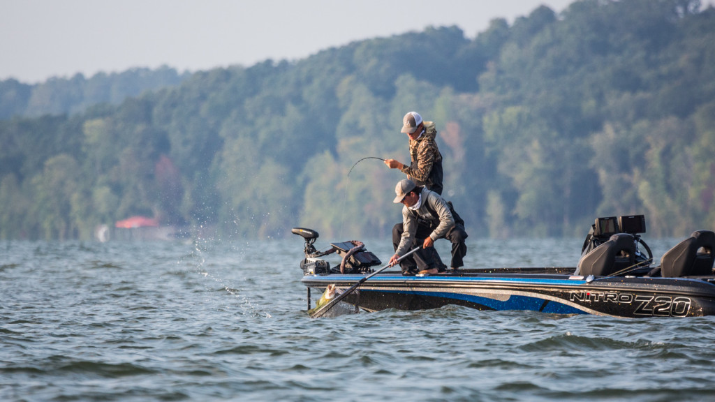 Image for Top Patterns and Baits from Kentucky Lake