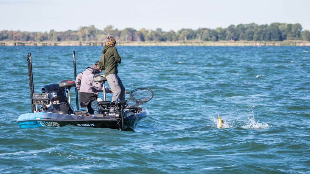 Image for Top Patterns and Baits from the Detroit River